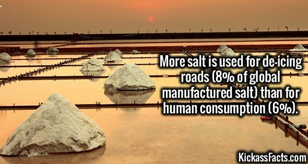 3210 Salt Consumption-More salt is used for de-icing roads (8% of global manufactured salt) than for human consumption (6%).