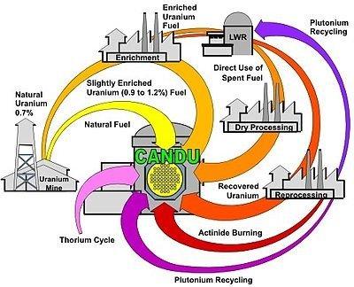 CANDU Reactors