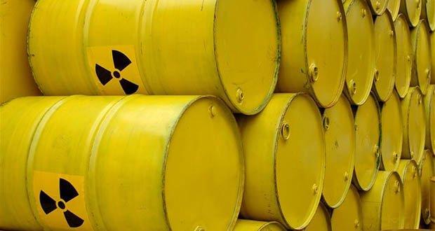 Nuclear Action Offering Nuclear Waste Barrels to Province North Holland in HaarlemNucleaire Actie Aanbieden Kernafvalvaten aan Provincie Noord-Holland in Haarlem