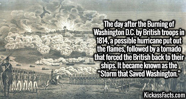 "3260 Burning of Washington-The day after the Burning of Washington D.C. by British troops in 1814, a possible hurricane put out the flames, followed by a tornado that forced the British back to their ships. It became known as the ""Storm that Saved Washington."""