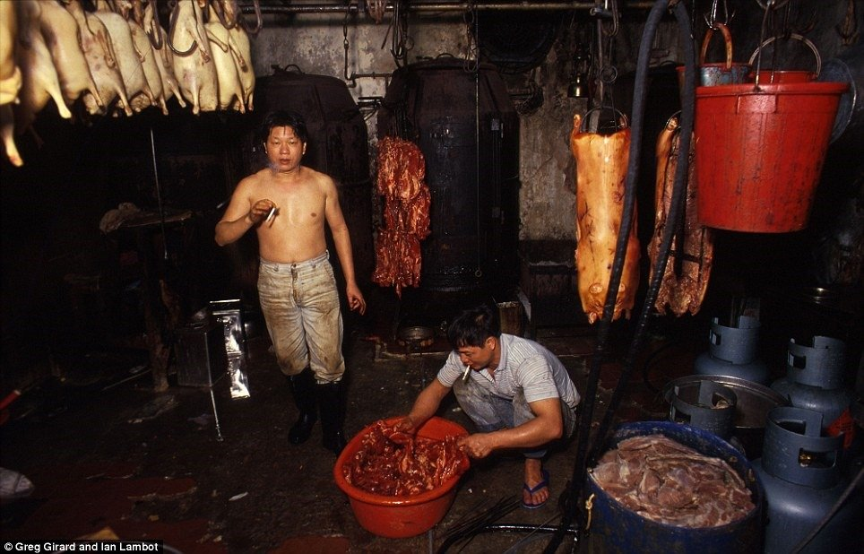 Kowloon Walled City 8