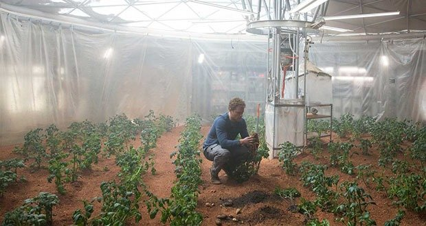 Potato Farm