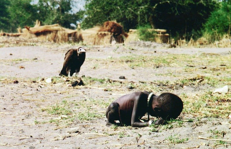 12. Vulture and the Little Girl