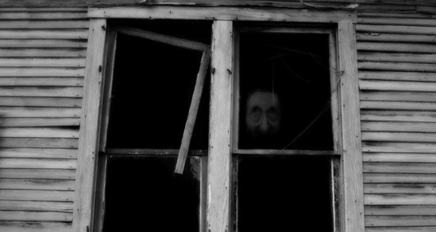 Window Faces