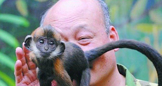 Zookeeper with Monkey