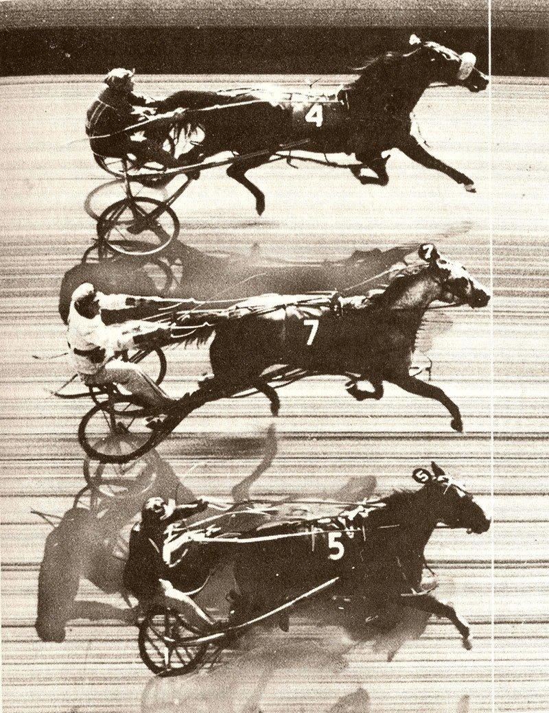 06. Horse Race