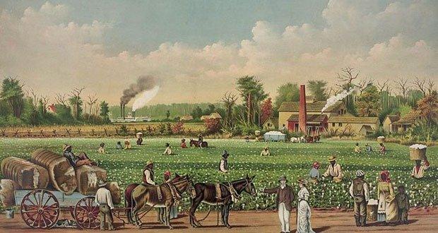 American Plantations