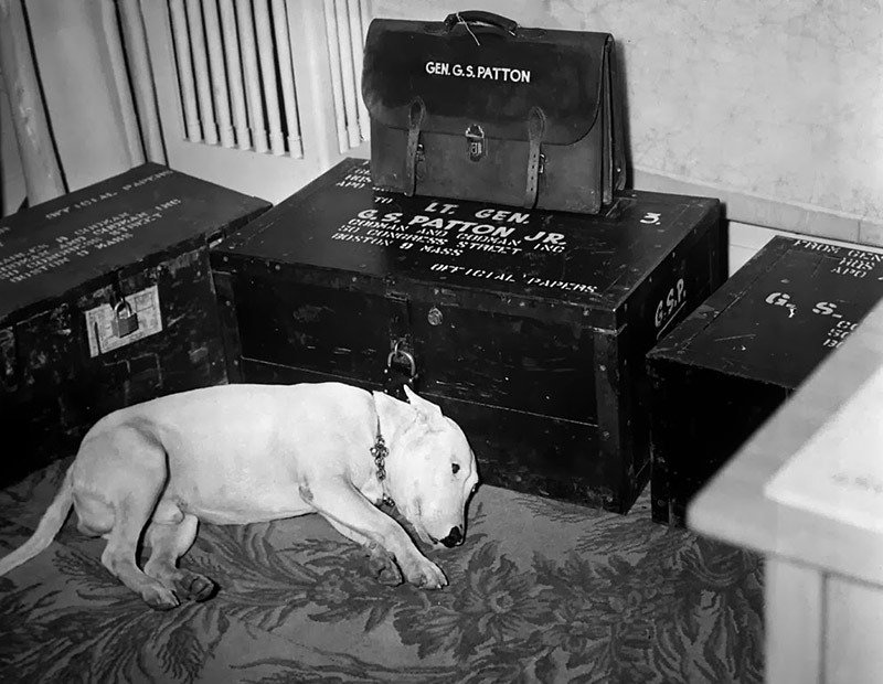 01. Patton's Dog