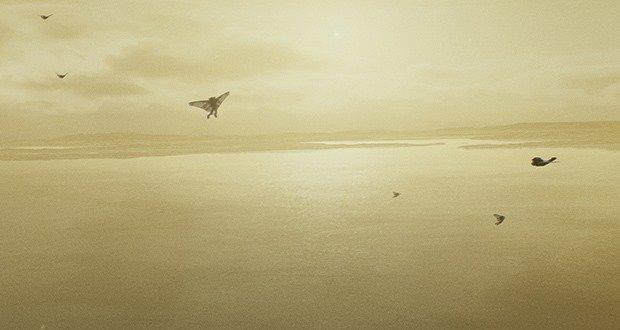 08. Flying like a bird