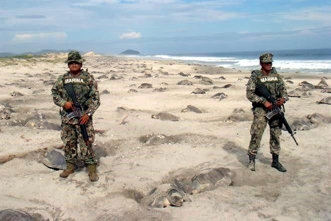 24. Marines