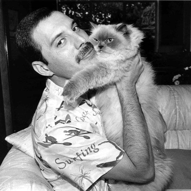 Freddie Mercury / Farookh Bulsara