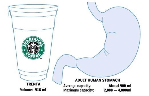 starbucks-cup-human-stomach-comparison