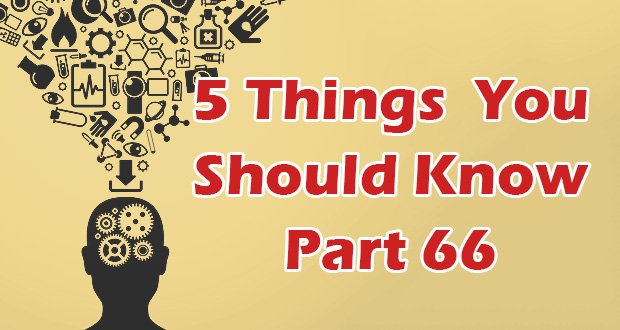 5-things-you-should-know