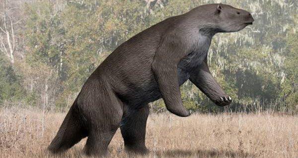 elephant-sized-sloth