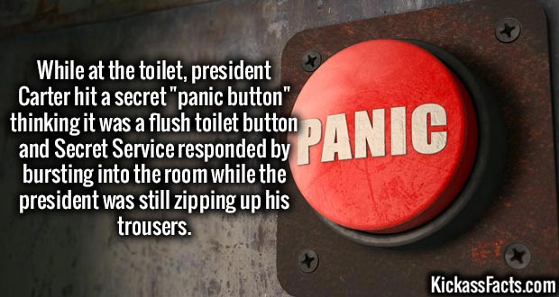 """While at the toilet, president Carter hit a secret """"panic button"""" thinking it was a flush toilet button and Secret Service responded by bursting into the room while the president was still zipping up his trousers."""