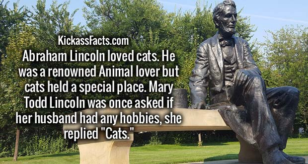 "Abraham Lincoln loved cats. He was a renowned Animal lover but cats held a special place. Mary Todd Lincoln was once asked if her husband had any hobbies, she replied ""Cats."""
