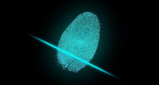Fingerprints Facts - 30 Interesting Facts About ...