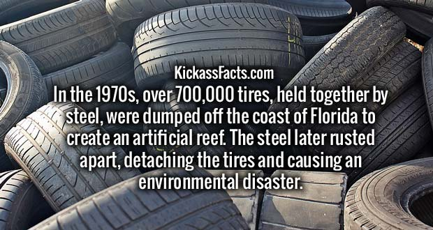 In the 1970s, over 700,000 tires, held together by steel, were dumped off the coast of Florida to create an artificial reef. The steel later rusted apart, detaching the tires and causing an environmental disaster.
