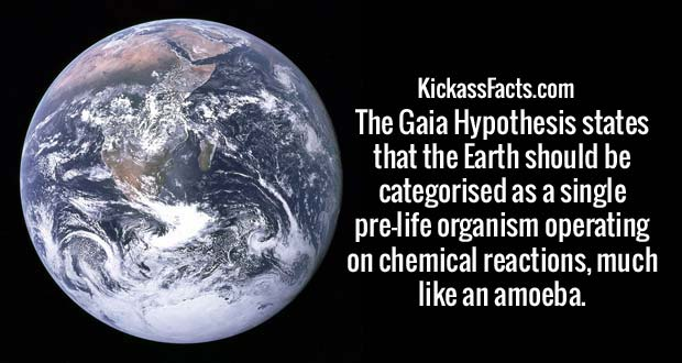The Gaia Hypothesis states that Earth should be categorised as a single pre-life organism operating on chemical reactions, much like an amoeba.