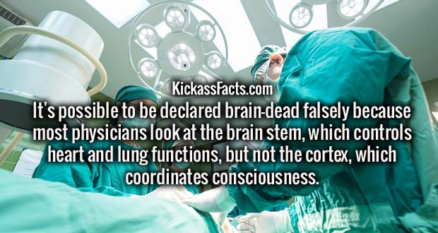 It's possible to be declared brain-dead falsely because most physicians look at the brain stem, which controls heart and lung functions, but not the cortex, which coordinates consciousness.