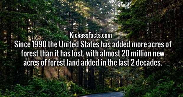 Since 1990 the United States has added more acres of forest than it has lost, with almost 20 million new acres of forest land added in the last 2 decades.