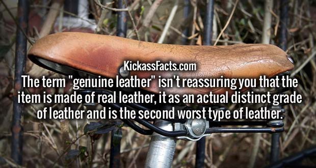 "The term ""genuine leather"" isn't reassuring you that the item is made of real leather, it as an actual distinct grade of leather and is the second worst type of leather."