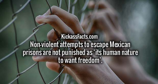 Non-violent attempts to escape Mexican prisons are not punished as 'its human nature to want freedom'.