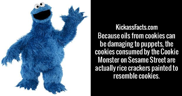 Because oils from cookies can be damaging to puppets, the cookies consumed by the Cookie Monster on Sesame Street are actually rice crackers painted to resemble cookies.
