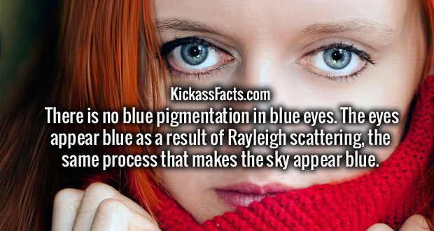 There is no blue pigmentation in blue eyes. The eyes appear blue as a result of Rayleigh scattering, the same process that makes the sky appear blue.