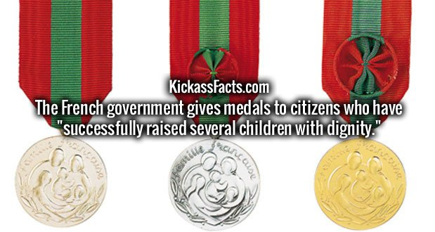 "The French government gives medals to citizens who have ""successfully raised several children with dignity."""