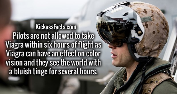 Pilots are not allowed to take Viagra within six hours of flight as Viagra can have an effect on color vision and they see the world with a bluish tinge for several hours.