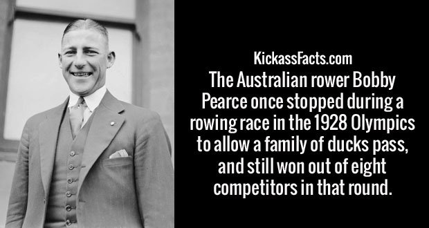 The Australian rower Bobby Pearce once stopped during a rowing race in the 1928 Olympics to allow a family of ducks pass, and still won out of eight competitors in that round.
