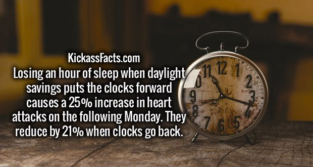 Losing an hour of sleep when daylight savings puts the clocks forward causes a 25% increase in heart attacks on the following Monday. They reduce by 21% when clocks go back.