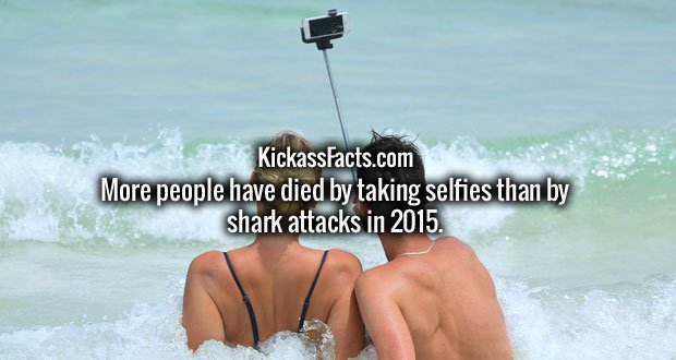 More people have died by taking selfies than by shark attacks in 2015.