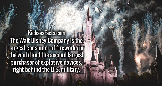 The Walt Disney Company is the largest consumer of fireworks in the world and the second largest purchaser of explosive devices, right behind the U.S. military.