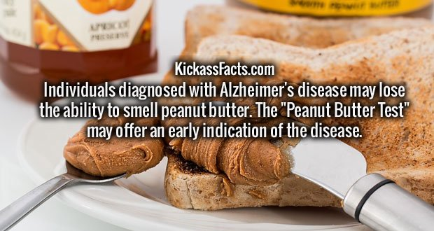 "Individuals diagnosed with Alzheimer's disease may lose the ability to smell peanut butter. The ""Peanut Butter Test"" may offer an early indication of the disease."