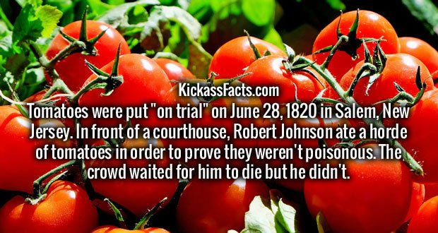 "Tomatoes were put ""on trial"" on June 28, 1820 in Salem, New Jersey. In front of a courthouse, Robert Johnson ate a horde of tomatoes in order to prove they weren't poisonous. The crowd waited for him to die but he didn't."