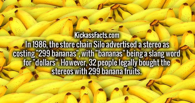 """In 1986, the store chain Silo advertised a stereo as costing """"299 bananas"""", with """"bananas"""" being a slang word for """"dollars"""". However, 32 people legally bought the stereos with 299 banana fruits."""