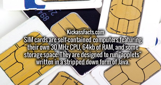 """SIM cards are self-contained computers featuring their own 30 MHz CPU, 64kb of RAM, and some storage space. They are designed to run """"applets"""" written in a stripped down form of Java."""