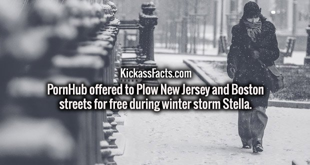 PornHub offered to Plow New Jersey and Boston streets for free during winter storm Stella.