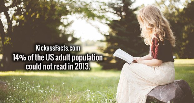 14% of the US adult population could not read in 2013.