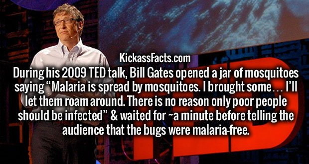 "During his 2009 TED talk, Bill Gates opened a jar of mosquitoes saying ""Malaria is spread by mosquitoes. I brought some… I'll let them roam around. There is no reason only poor people should be infected"" & waited for ~a minute before telling the audience that the bugs were malaria-free."