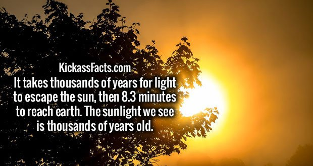 It takes thousands of years for light to escape the sun, then 8.3 minutes to reach earth. The sunlight we see is thousands of years old.
