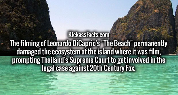 """The filming of Leonardo DiCaprio's """"The Beach"""" permanently damaged the ecosystem of the island where it was film, prompting Thailand's Supreme Court to get involved in the legal case against 20th Century Fox."""