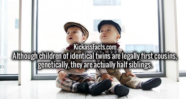 Although children of identical twins are legally first cousins, genetically, they are actually half siblings.