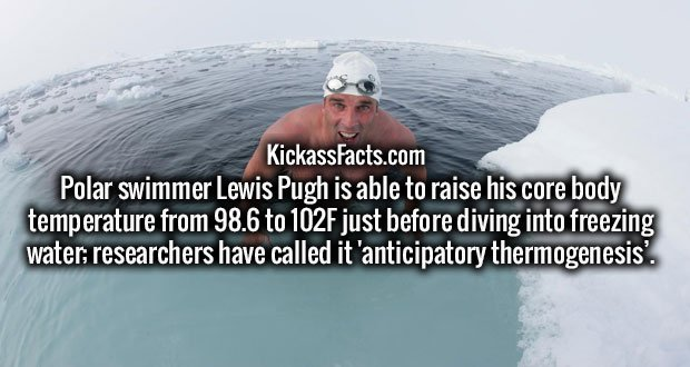 Polar swimmer Lewis Pugh is able to raise his core body temperature from 98.6 to 102F just before diving into freezing water; researchers have called it 'anticipatory thermogenesis'.