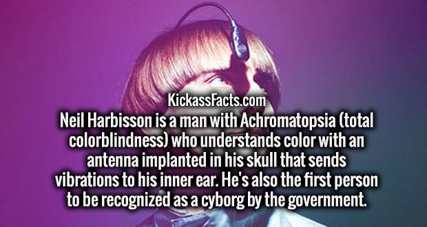 Neil Harbisson is a man with Achromatopsia (total colorblindness) who understands color with an antenna implanted in his skull that sends vibrations to his inner ear. He's also the first person to be recognized as a cyborg by the government.