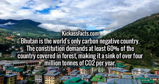 Bhutan is the world's only carbon negative country. The constitution demands at least 60% of the country covered in forest, making it a sink of over four million tonnes of CO2 per year.