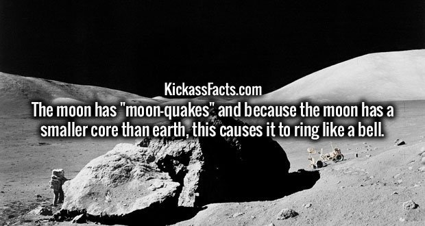 "The moon has ""moon-quakes"" and because the moon has a smaller core than earth, this causes it to ring like a bell."