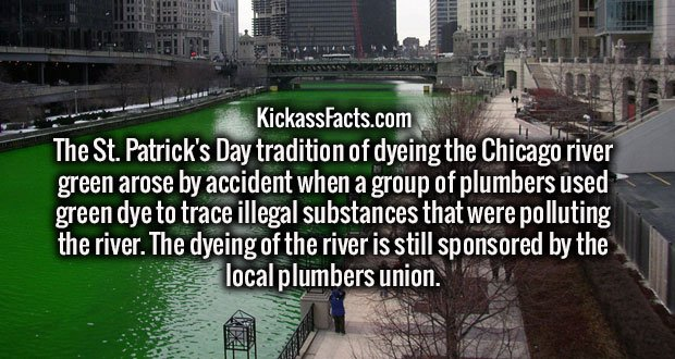 The St. Patrick's Day tradition of dyeing the Chicago river green arose by accident when a group of plumbers used green dye to trace illegal substances that were polluting the river. The dyeing of the river is still sponsored by the local plumbers union.